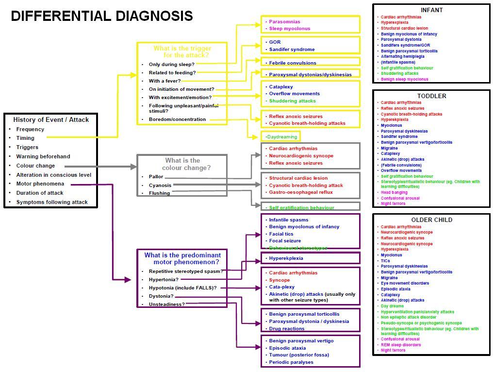 diagnosis epilepsy diagnosis